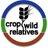CropWildRelativ